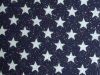 navy sparkle star